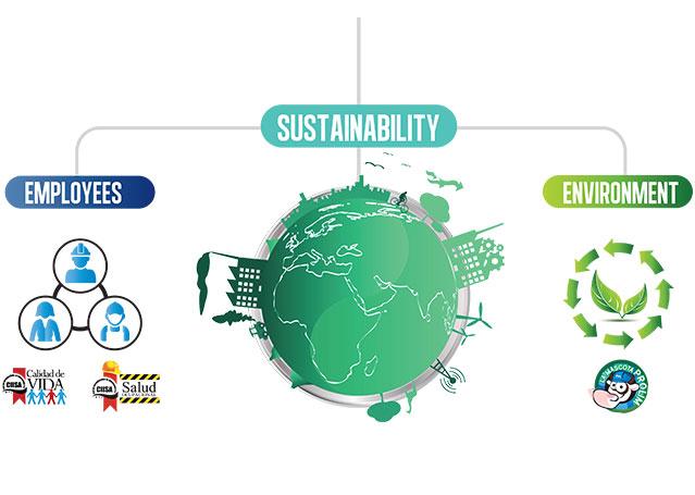 sostenibilidad-division